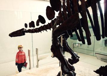 stegosaur_04.23.16