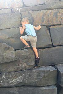 rock_climber_08.14.16