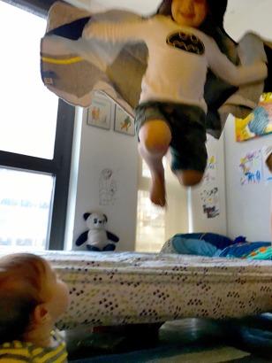bat-flight_09-08-16