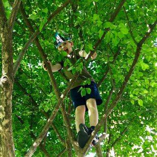Henry_tree_climb_05.24.18