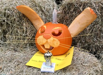 Jack-O-Rabbit-10.28.18