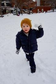 Quin_snowball_03.02.19