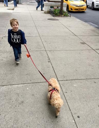 dog_walker_04.09.19
