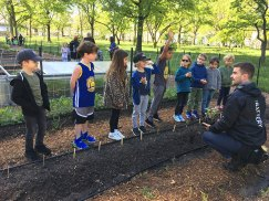 Battery_Urban_Farm_field_trip_05.15.19