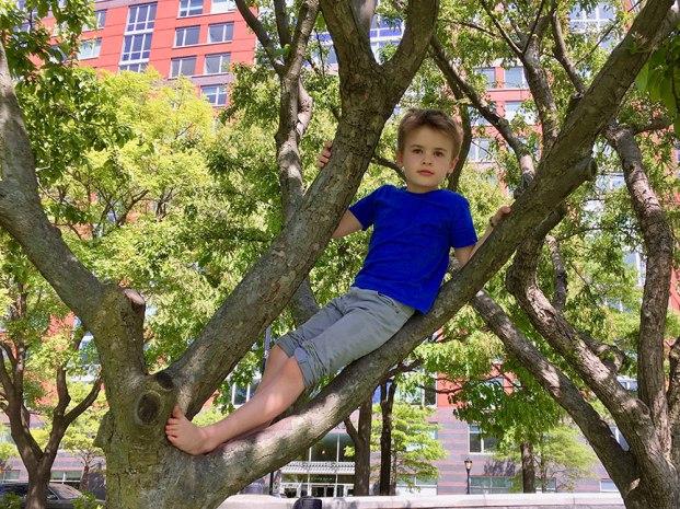 Henry_tree_climb_05.11.19