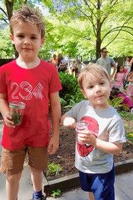 Henry_Quin_ladybug_day_06.15.19