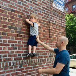 wall_crawler_06.22.19