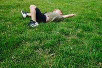 Q_grass_roll_1