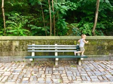 bench-runner-08.11.19