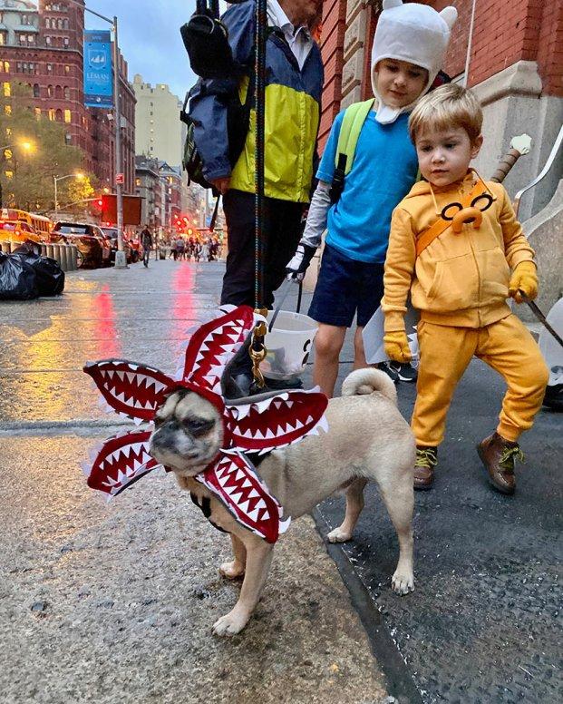Halloween_demodog_10.31.19